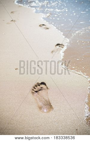 foot prints in the wet shore sand