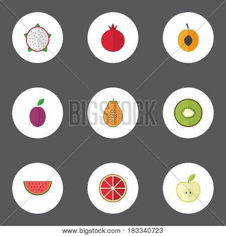 Flat Jonagold, Garnet, Orange And Other Vector Elements. Set Of Fruit Flat Symbols Also Includes Slice, Fruit, Watermelon Objects.