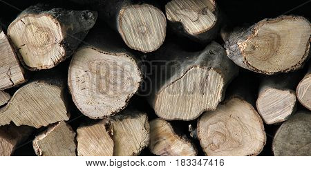 Texture of natural fireplace woodpile with year rings.