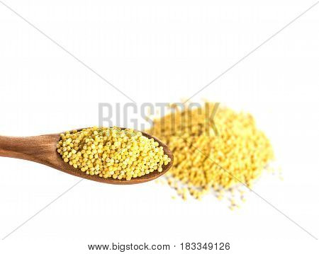 Millet on wooden spoon isolated. Grain of millet