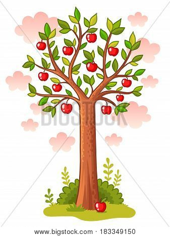 Apple tree stands in the meadow. Vector illustration with tree and apples on a background of the sky.
