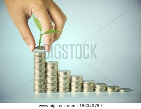 hand put money on pile of coin with small tree concept in save and growing finance
