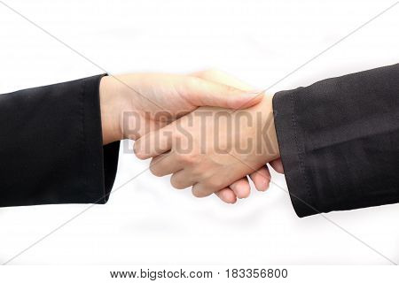 Close Up Of Two Business Women Shaking Hand