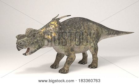 3D Computer rendering illustration of Achelousaurus dinosaur
