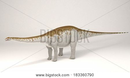 3D Computer rendering illustration of Apatosaurus dinosaur