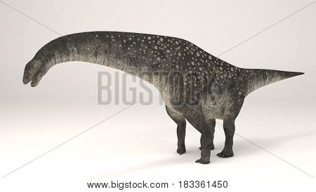3D Computer rendering illustration of Titanosaurus dinosaur