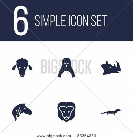 Set Of 6 Brute Icons Set.Collection Of Wildcat, Horse, Diver And Other Elements.