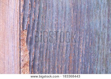 Detail Shot Of A Old Wooden Door