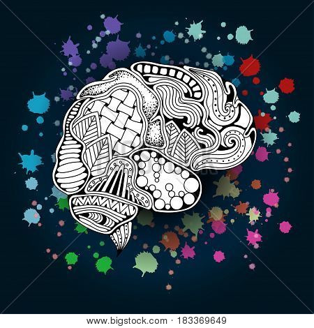 Concept of the human brain. Vector illustration. Zentangle sketchy human brain doodle poster with colorful paint splashes. Creative mind learning and design