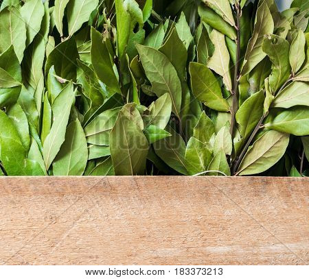 Composition with laurel and wood with lots of copy space