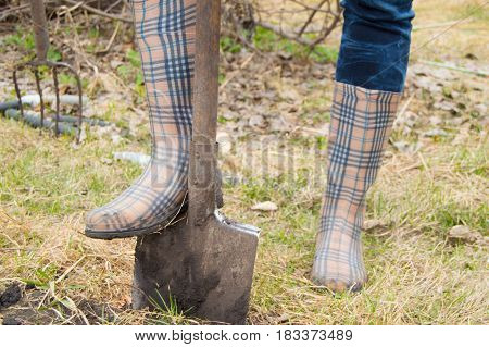 woman in beautiful plaid rubber boots using shovel in her garden.