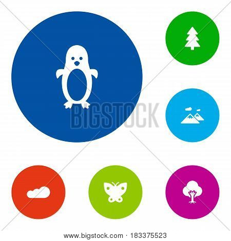 Set Of 6  Icons Set.Collection Of Polar Bird, Overcast, Spruce And Other Elements.