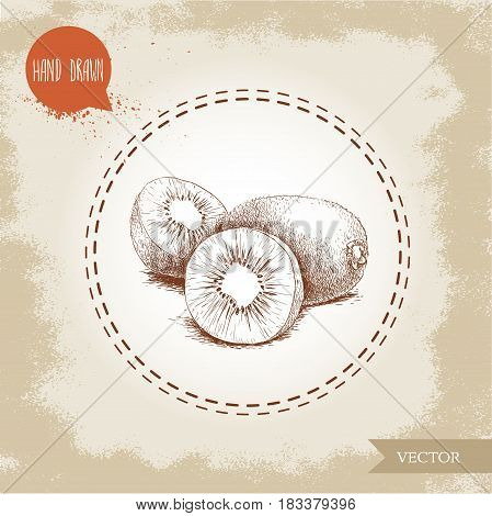 Hand drawn sketch style kiwi fruits group vector illustration. Vintage design isolated on grunge background.