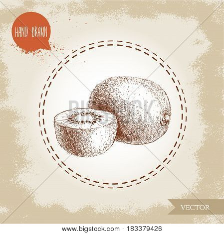 Hand drawn sketch style kiwi fruit vector illustration. Vintage design isolated on grunge background.