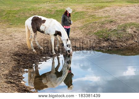 Cowgirl with cowboy hat watering thirsty paint horse reflected in pond after a long trail ride