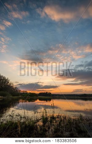 Evening Landscape Over The Pond With Reed