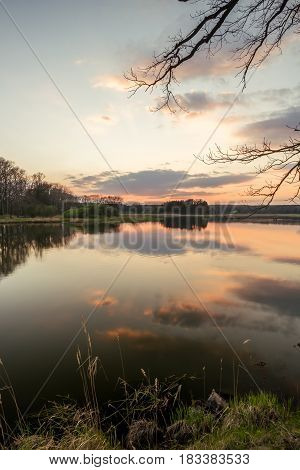Evening Landscape Over The Pond With Reed And Grass