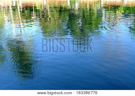 Beautiful Refection of Green Tree in River.