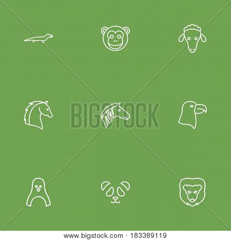 Set Of 9 Beast Outline Icons Set.Collection Of Horse, Lion, Lizard And Other Elements.
