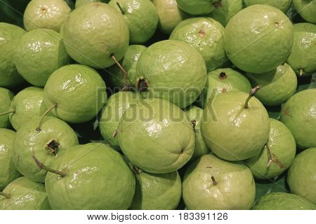 Pile of Light Green Fresh Guava, Testy and Healthy Tropical Fruits, Thailand