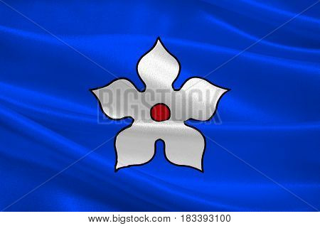 Flag of Haguenau is a commune in the Bas-Rhin department of France. 3d illustration