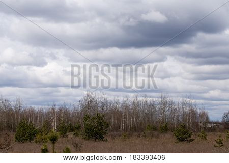 Rural Landscape With Beautiful Sky