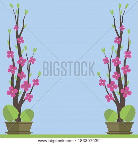 Sakura branch of pink color in a pot for design