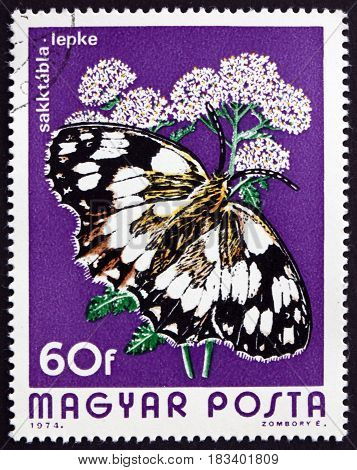 HUNGARY - CIRCA 1974: a stamp printed in Hungary shows Marbled White Melanargia Galathea is a Butterfly circa 1974