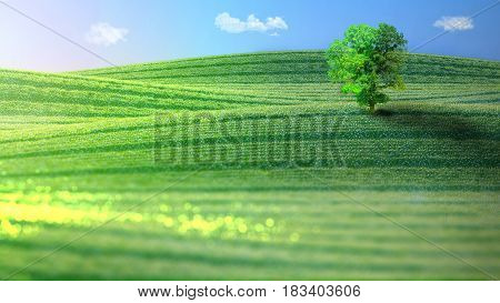 Landscape of verdant hills topped by a tree in the spring. 3D rendering.