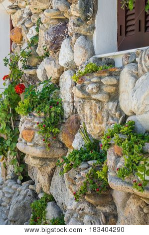 Old natural stone wall with plants growing on it