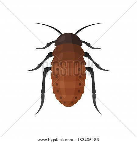 Cockroach vector icon on white background. Illustration of a cartoon big brown cockroach. Insects isolated symbol.