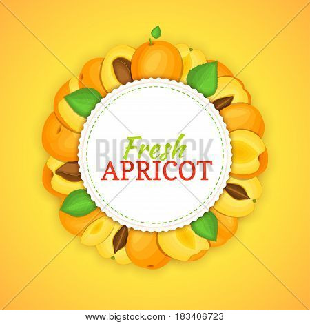 Round colored frame composed of delicious apricot fruit. Vector card illustration. Circle apricot frame. Ripe fresh apricots fruits appetizing looking for packaging design of juice, breakfast food