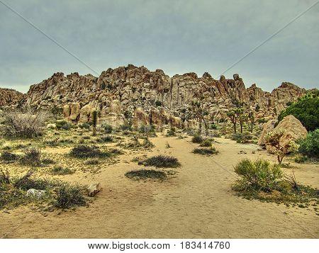 Rock formations of Joshua Tree National Park - California