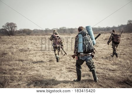 Hunting scene with group of hunters with backpacks and hunting ammunition going through rural field during hunting season in overcast day