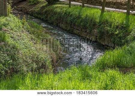 River In Europe Running In A Curve With Green Grass As Trees