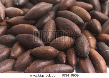 Brazilian Castanha De Baru Nut