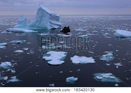 iceberg and drift ice in the north