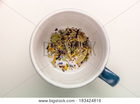 cup with herbs without water on white background