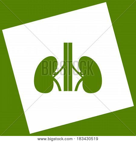 Human anatomy. Kidneys sign. Vector. White icon obtained as a result of subtraction rotated square and path. Avocado background.