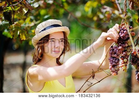 Happy Female Farmer Working In Fruit Orchard