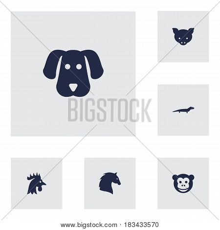 Set Of 6 Brute Icons Set.Collection Of Steed, Ape, Hound And Other Elements.