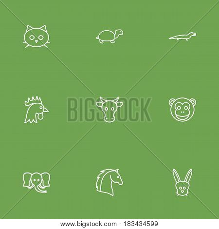 Set Of 9 Beast Outline Icons Set.Collection Of Elephant, Horse, Turtle And Other Elements.