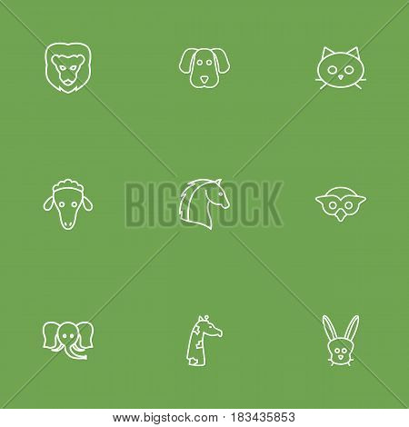 Set Of 9 Brute Outline Icons Set.Collection Of Rabbit, Giraffe, Lion And Other Elements.