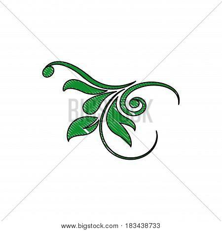 swirl crest vintage decor design image vector illustration