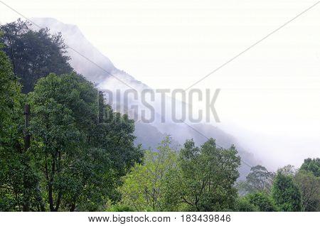 Early morning clouds hanging over Yandangshan or Yandang mountains in China in Zhejiang province.