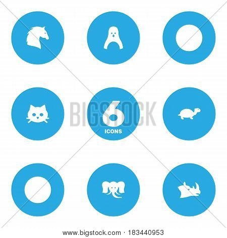 Set Of 6 Brute Icons Set.Collection Of Pussy, Diver, Rhinoceros And Other Elements.