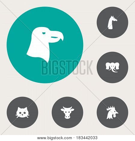 Set Of 6 Brute Icons Set.Collection Of Camelopard, Rooster, Trunked Animal And Other Elements.