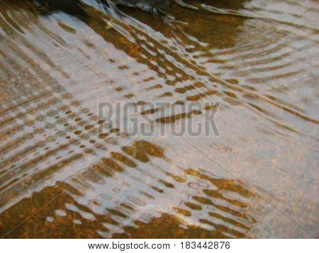 Water running over a rock in a shallow creek.