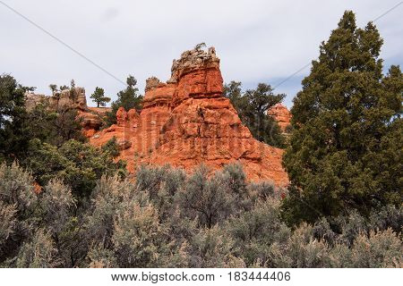 The Red Canyon along Scenic Byway Utah Highway #12 is a first highlight on the way to Bryce Canyon