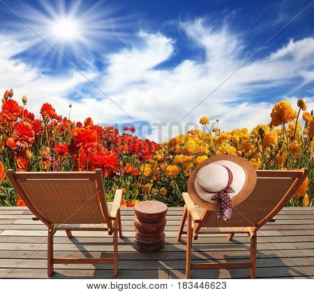 The spring sun. Wooden comfortable chairs next to the flower field. The concept of recreation and eco-tourism. Straw hat hanging on a deck chair